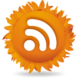 Bloggers – Don't Abandon Your RSS Feed