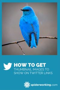 How to get thumbnail images to show on Twitter links