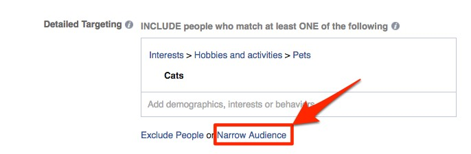 narrow facebook ad audience