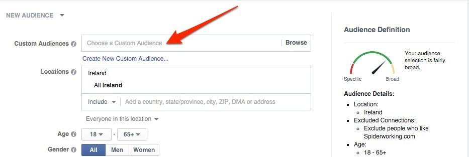 Choose how to upload your audience.