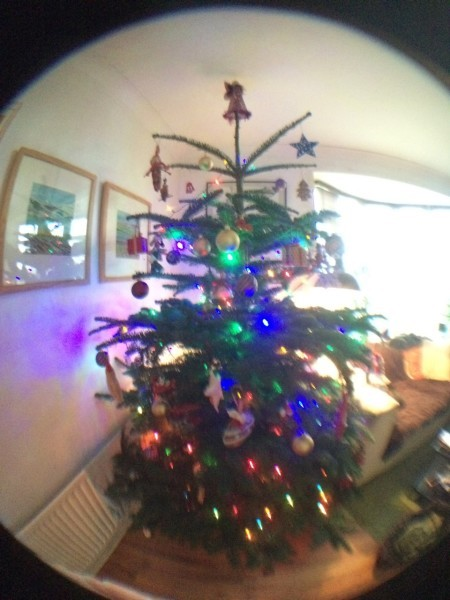 christmas tree wide angle olloclip