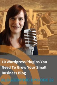 wordpress plugins for small business