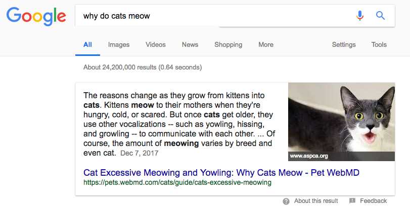 Knowledge box for 'Why do cats meow'